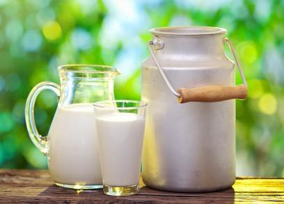 Die Milch macht's… oder?